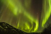 USA, Alaska, Fairbanks von Danita Delimont