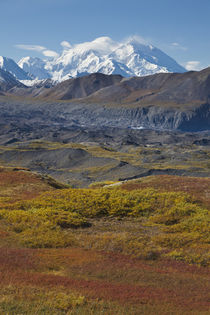 Mt. McKinley, tallest peak in North America by Danita Delimont