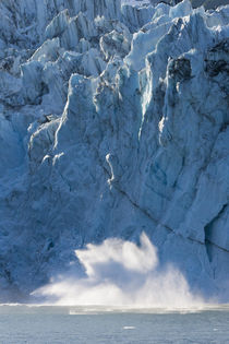 Surprise Glacier von Danita Delimont