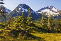 USA, Alaska, mountain landscape by Danita Delimont