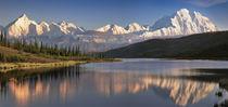 USA Alaska Denali Mt von Danita Delimont