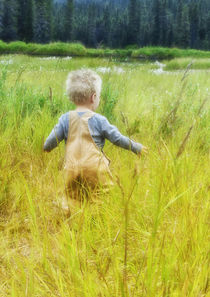 USA, Alaska, 2 year old child playing in tall grass, summertime. by Danita Delimont