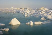 Chukchi Sea, off shore from Barrow, Alaska von Danita Delimont
