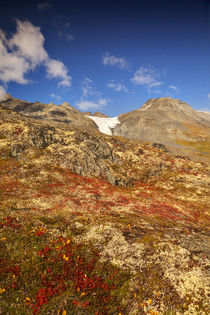Autum Color in the Wrangell-St von Danita Delimont