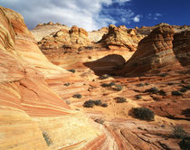 USA, Arizona, Paria Canyon, Sandstone formations at Coyote Buttes area by Danita Delimont