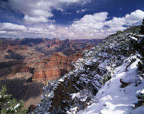 USA, Arizona, View of Grand Canyon National Park von Danita Delimont
