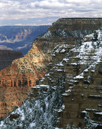 USA, Arizona, View of Grand Canyon National Park by Danita Delimont