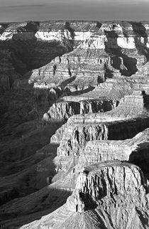 USA, Arizona, Grand Canyon National Park von Danita Delimont