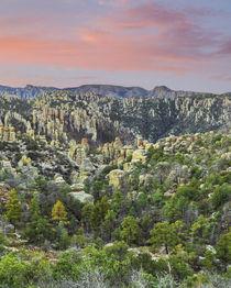 USA, Arizona, Chiricahua National Monument by Danita Delimont