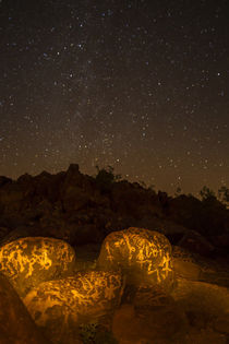 USA, Arizona, Painted Rock Petroglyph Site von Danita Delimont