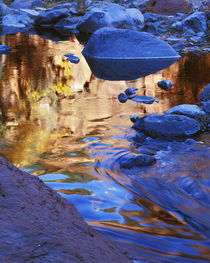 USA, Arizona, Coconino National Forest, Oak Creek, reflections by Danita Delimont