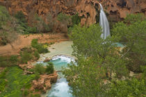 Havasu Falls on the Havasupai Reservation in Arizona, USA by Danita Delimont