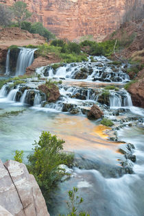Navajo Falls on the Havasupai Reservation in Arizona, USA by Danita Delimont