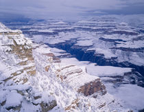 Snow covered Grand Canyon from along the South Rim, Grand Ca... by Danita Delimont