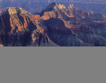 USA, Arizona, Grand Canyon National Park, North Rim, Evening... von Danita Delimont