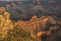Sunrise from Yaki Point Grand Canyon, Arizona, USA von Danita Delimont