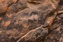USA, Arizona, Coconino National Forest, Palatki Ruin, Pictographs. by Danita Delimont