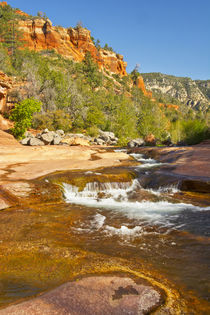 Oak Creek, Slide Rock State Park, Sedona, Arizona, USA. von Danita Delimont
