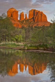 Cathedral Rock, Sunset, Red Rock Crossing, Sedona, Arizona, USA von Danita Delimont