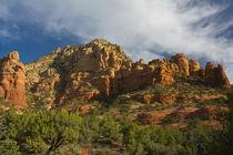 Red Rock Vista, Sedona, Arizona, USA von Danita Delimont