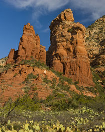 Thunder Mountain Trail, Thunder Mountain, Coffee Pot Rock, S... by Danita Delimont