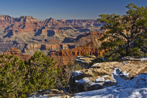 Vista, from Mather Point, South Rim, Grand Canyon National P... von Danita Delimont
