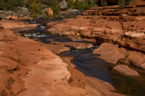 USA, Arizona, Sedona, Slide Rock State Park von Danita Delimont
