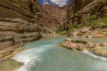 Havasu Creek by Danita Delimont