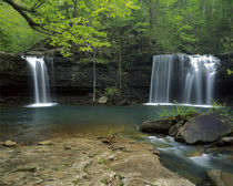 USA, Arkansas, Ozark National Forest, Cascades by Danita Delimont