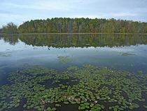 Lake Bailey, Petit Jean State Park, Arkansas, USA by Danita Delimont