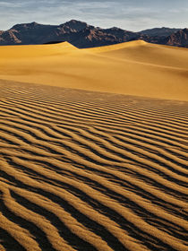 USA, California, Death Valley National Park, Early morning s... von Danita Delimont