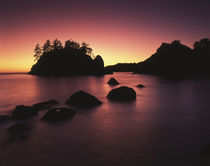 USA, California, Trinidad, Sea stack at sunset by Danita Delimont