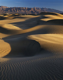 USA, California, Death Valley National Park, View of sand du... by Danita Delimont