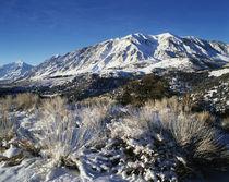 USA, California, Eastern Sierra Range, View of snow-covered ... von Danita Delimont