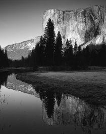 USA, California, Yosemite National Park, El Capitan reflecte... by Danita Delimont