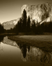 USA, California, Yosemite National Park, El Capitan reflecte... by Danita Delimont