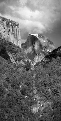 USA, California by Danita Delimont