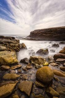 Coastline at Cabrillo National Monument von Danita Delimont
