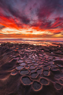 Amazing sunset at the tide pools in La Jolla, CA by Danita Delimont