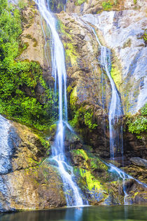 Salmon Creek Falls in the Santa Lucia mountains of California von Danita Delimont