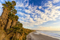 The golden California coastline at Swami's Beach in Encinitas, CA by Danita Delimont