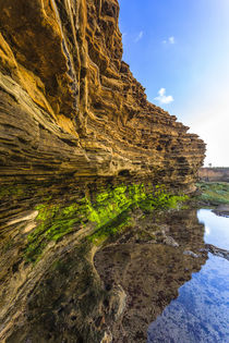 Details and reflection of the cliffside near Sunset Cliffs i... by Danita Delimont