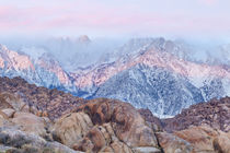 USA, California, Lone Pine by Danita Delimont