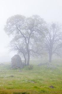 USA, California, Bullion Mountain by Danita Delimont