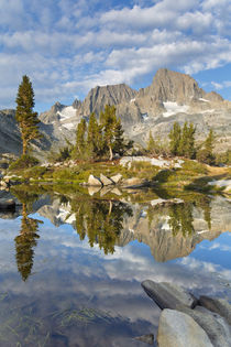 USA, California, Inyo National Forest by Danita Delimont