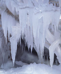Icicles in the Sierra von Danita Delimont