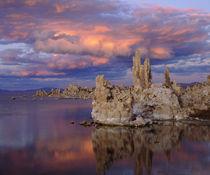Tufa Formations on Mono Lake von Danita Delimont