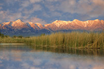USA, California, Sierra Nevada Mountains by Danita Delimont