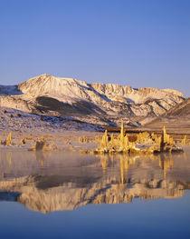 USA, California, Mono Lake by Danita Delimont