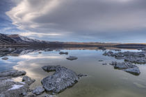 Mono Lake, California by Danita Delimont